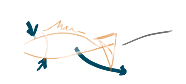 Graphics of a handmade fish